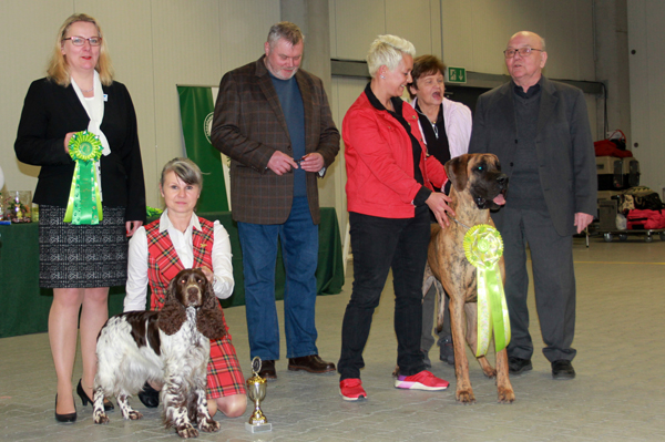Spaniel & Dogge, Best in Show in Gießen 2018