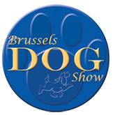 brussels-dog-show badge.